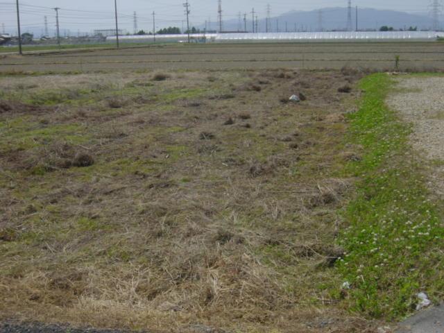 草刈り 作業後